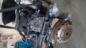 Motore BNM Volkswagen  Polo del 2008 1cc.   da autodemolizione
