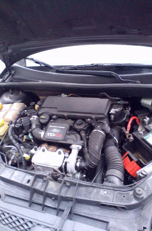 Motore Ford  Fiesta del 2005 1399cc.   da autodemolizione