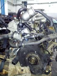Motore AR37101 Fiat  Bravo del 2001 1900cc.   da autodemolizione