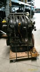 Motore D4FD7 Da Renault  Modus del 2008 1149cc. 1.2 16V Usato da autodemolizione