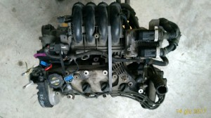 Motore 188A5.000 Fiat  Punto del 2000 1242cc. 1.2 16V  da autodemolizione