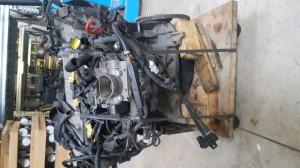 Motore 187A1.000 Da Fiat  Seicento del 2008 1108cc. 1.1 8V Usato da autodemolizione