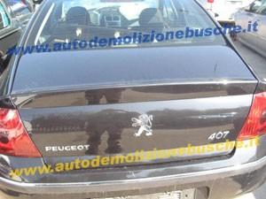 Portellone Peugeot  407  del 2007 da autodemolizione