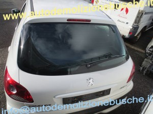 Portellone Peugeot  206 PLUS del 2010 da autodemolizione