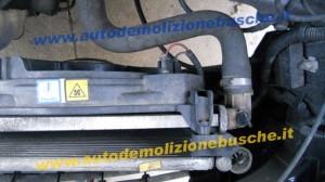 Radiatore Acqua Fiat  Punto del 2005 1242cc.   da autodemolizione