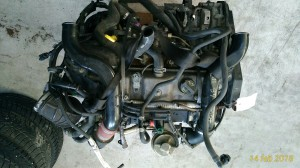 Motore FFDA Da Ford  Focus del 2004 1753cc. 1.8 TDCI Usato da autodemolizione