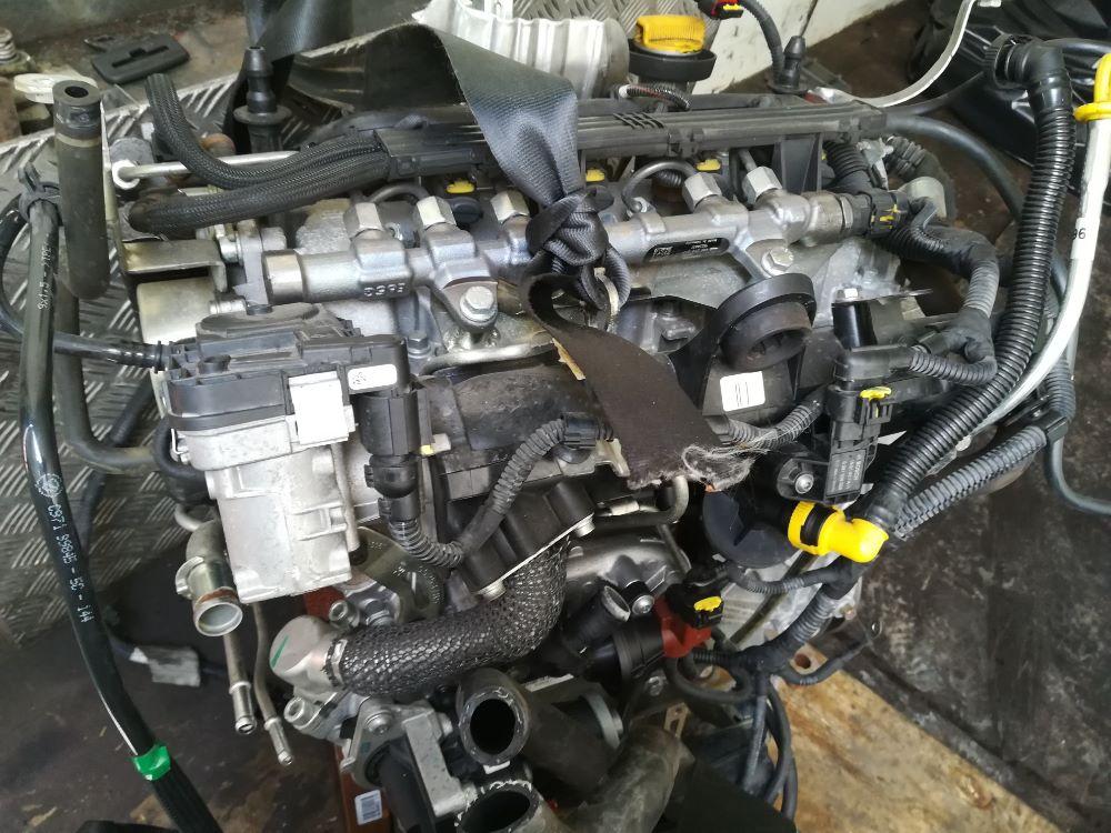 Motore 169A5000 Da Ford  Ka del 2016 1cc. 1.3 55 kw Usato da autodemolizione