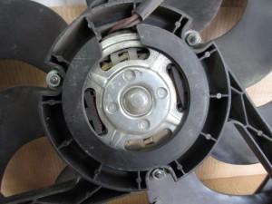 Ventola Radiatore Volkswagen  Polo del 2004 1400cc.   da autodemolizione