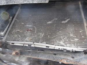 RENAULT  Clio DEL 2006 1390cc.